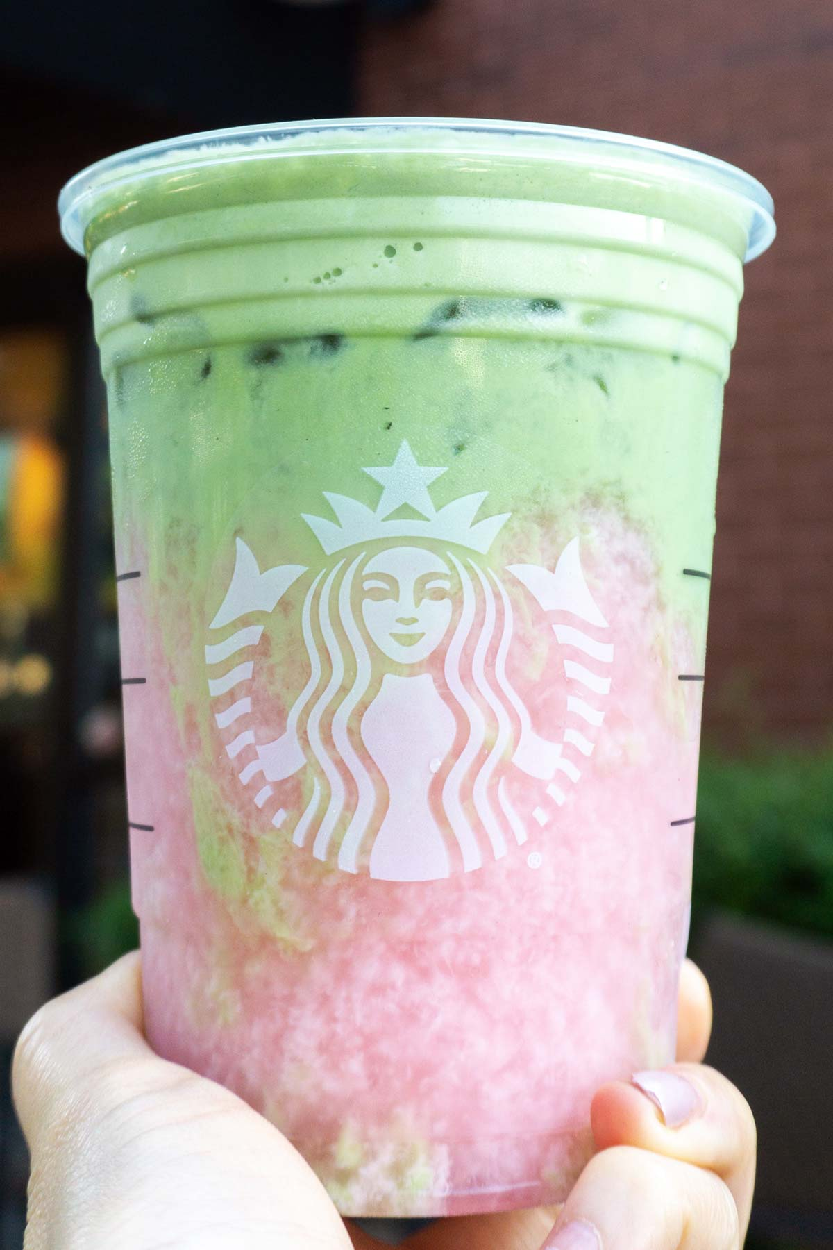 Holding a Starbucks cup with TikTok Matcha Pink Drink.